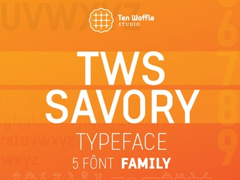 TWSSavory typeface - SAVORY font type typography typeface